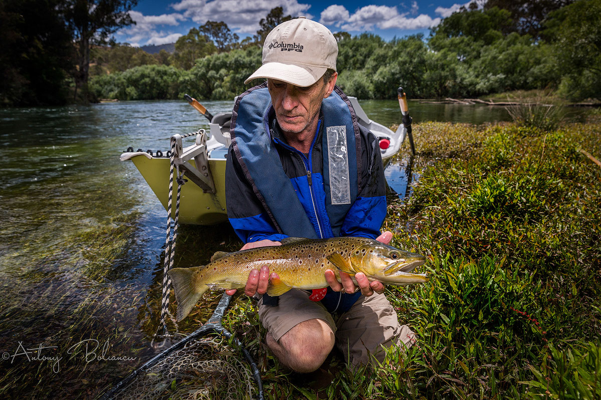 Fly Fish Victoria